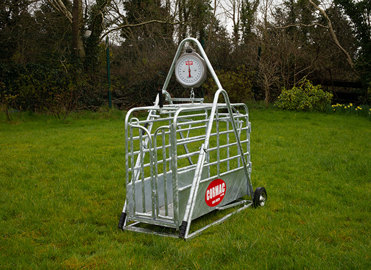 products-Sheep-Weighing-Scales